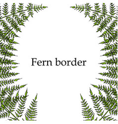 Fern drawing frame vector