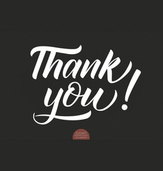 hand drawn lettering thank you elegant vector image