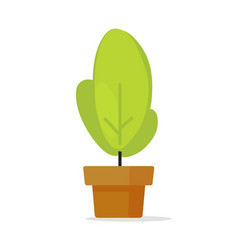 houseplant or house plant in pot icon vector image