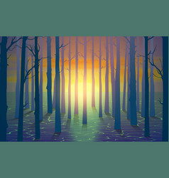 landscape mangove forest on beach in sunset vector image