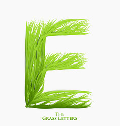 letter e of juicy grass alphabet green e vector image