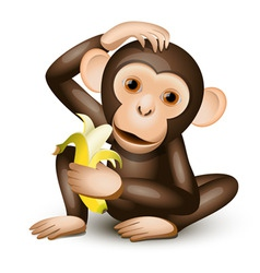 little monkey vector image