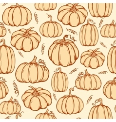Pattern of pumpkins vector image