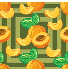 seamless pattern of ripe apricot vector image