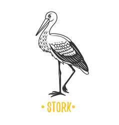 Stork black and white objects vector