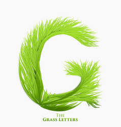 letter g of juicy grass alphabet green g vector image