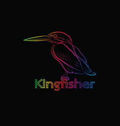 a kingfisher on black background bird vector image