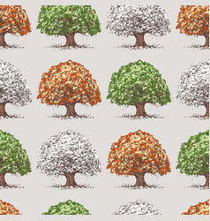 pattern trees at various times years vector image