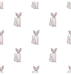 Peterbald icon in cartoon style isolated on white vector