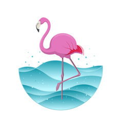 Pink flamingo on blue background vector