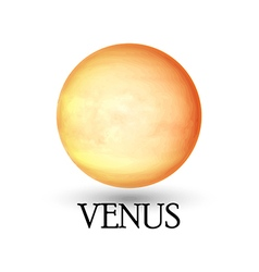 Planet venus isolated white background vector