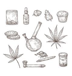 Sketch cannabis medical marijuana leaves weed vector