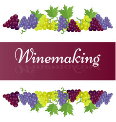 Winemaking template poster with grape bunches vector