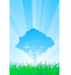 summer tree vector image
