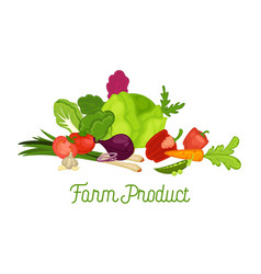 farm product promotional poster with fresh harvest vector image vector image