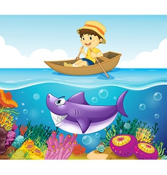 A boy in the ocean with a shark vector image