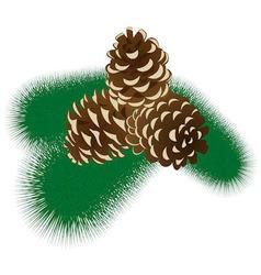 Fur tree branch with cones vector