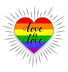 lgbt heart on white background vector image