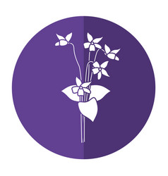 violet flower nature spring icon shadow vector image