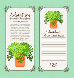 vintage label with adiantum plant vector image vector image
