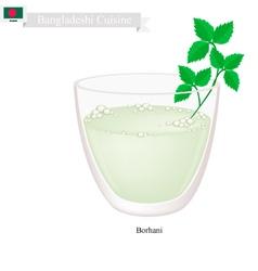 Borhani or bangladeshi cpicy salted yogurt drink vector