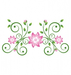 decorative scroll vector image