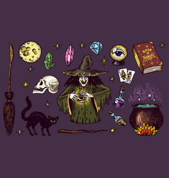 halloween elements magic ball witch with book vector image