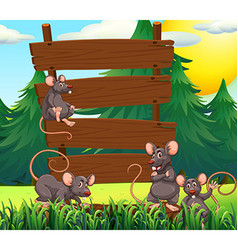 Rats and wooden signs in the garden vector image