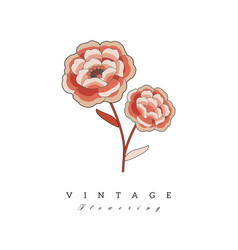 stylized vintage retro flower natural style brand vector image