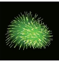 Green fireworks on dark background vector image