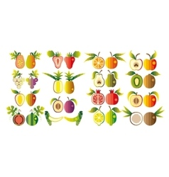 a set fruit vector image