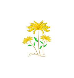 flowers logo design vector image