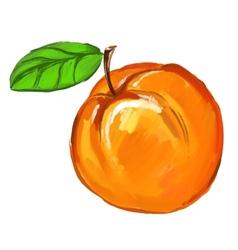 Peach ink hand drawn vector