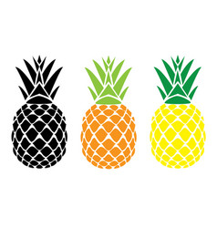 Pineapple fruit vector