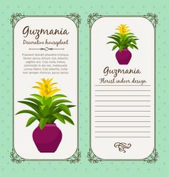vintage label with guzmania plant vector image