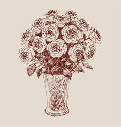 a bunch of roses in a flower vase hand drawing vector image