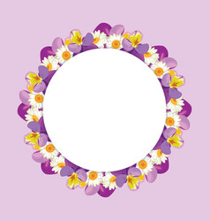 chamomile and pansies frame on pink purple vector image