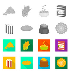 design cornfield and vegetable icon vector image
