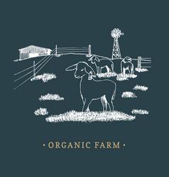 organic farm sketched drawing vector image