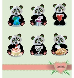 Panda Collection vector image