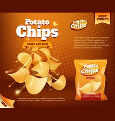 Potato crispy chips and foil bag advertising vector