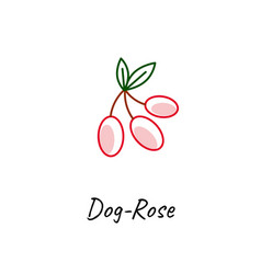 red dog rose icon on white vector image