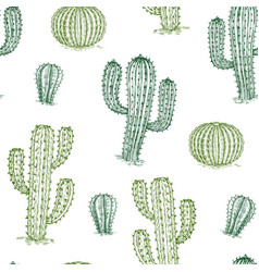 seamless pattern with cactus hand drawn desert vector image