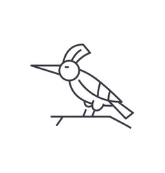woodpecker line icon concept woodpecker vector image