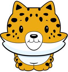 baby jaguar vector image