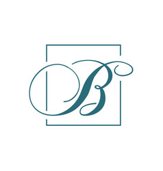 curvy luxury b initial letter b logo graphic vector image