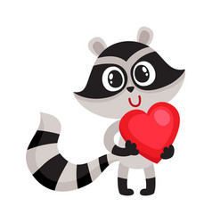 cute raccoon character holding big red heart sy vector image