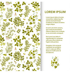 Flat poster or banner template with legume plants vector