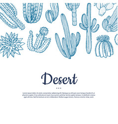 hand drawn wild cacti plants banner vector image