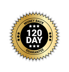 money back in 120 days guarantee sticker golden vector image